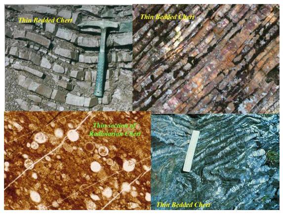 Gambar 3. Bedded Chert dan Sayatan Radiolarian Chert