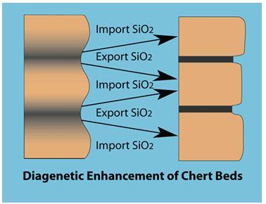 Gambar 7. Diagenesa dari Chert Berlapis
