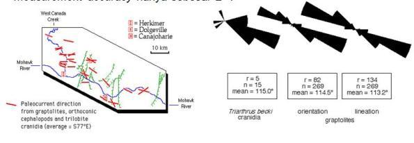 Gambar dan Diagram Rose dari Paleocurrent Directions oleh Fosil Graptolites, dan Trilobite cranidia di Mohowk River, Canada