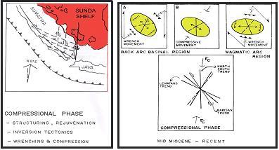 Gambar 5. Fase Kompresi Miosen Tengah Sampai Sekarang dan Elipsoid Model (Pulonggono dkk, 1992).