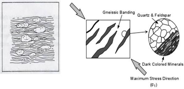 Gambar Struktur Gneissic dan Sketsa Pembentukan Struktur