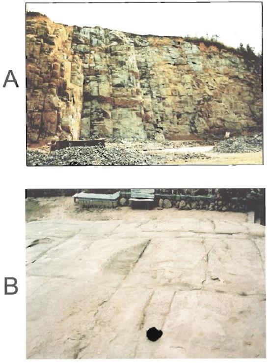 Gambar 1. Singkapan Granit di Camly Park (SW Vietnam), Menunjukkan Rekahan Pendinginan Sudut Pandang Dari Samping (a) dan Pada Bagian Atas (b). (Sanders dkk, 2003; dalam Petford dan McCaffrey, 2003).