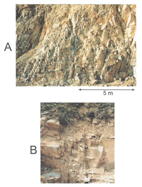 Gambar 3. Shear Fracture pada Ryolite (a) dan Subseismic Fault (b) di Granit, Keduanya Berada di Con Dao Island (Sanders dkk, 2003; dalam Petford dan McCaffrey, 2003).
