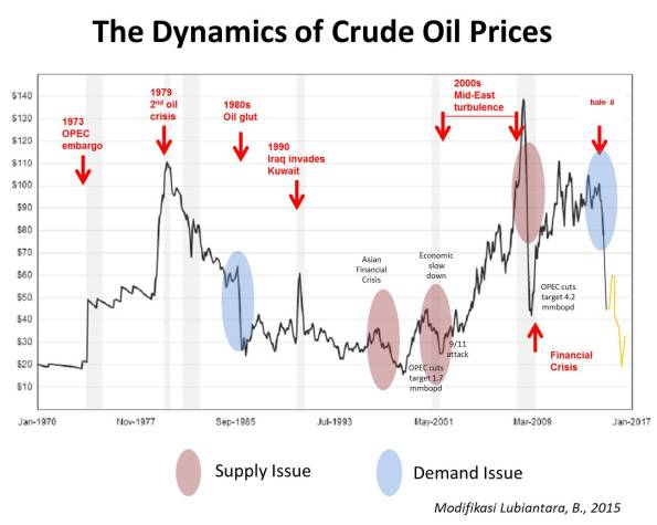 The Dynamics of Crude Oil Prices